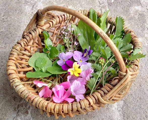 seasonal_salad_herbs_and_ edible_flowers