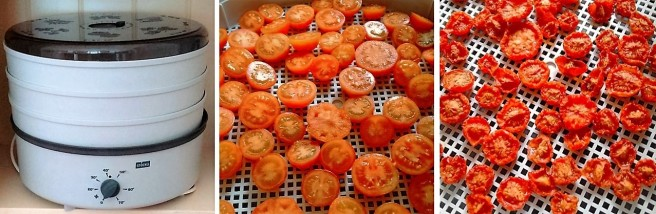 Dehydrating_tomatoes