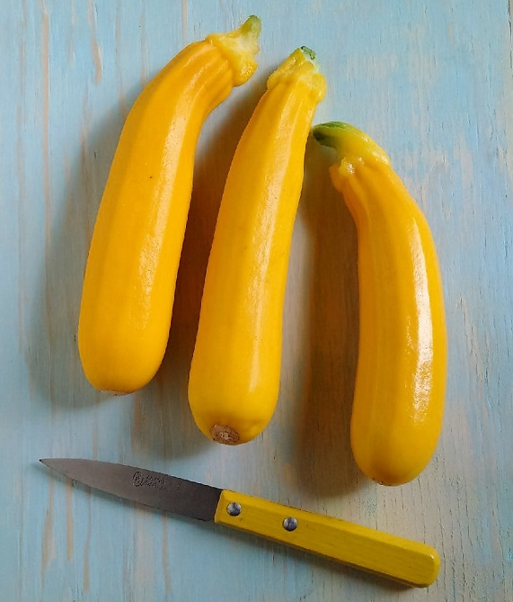 Homegrown_yellow_courgettes