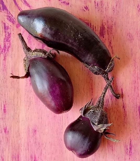 Fresh_aubergine_(eggplant)_fruit