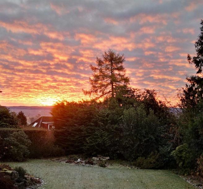 Winter_sunrise_over_a_Scottish_garden