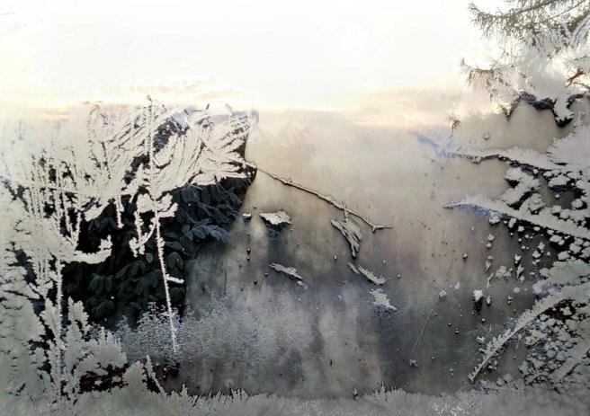 Ice_patterns_on_inside_of_window