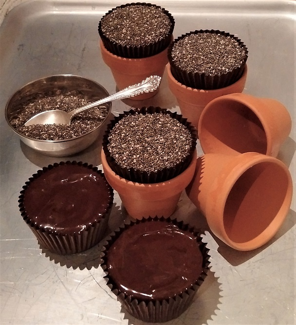 Icing_and_topping_muffins_with Chia_seeds