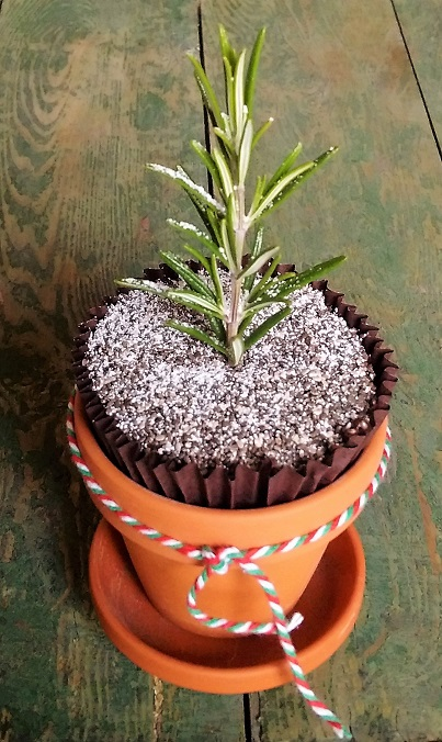 Chocolate_and_rosemary_muffin_dusted_with_icing_sugar