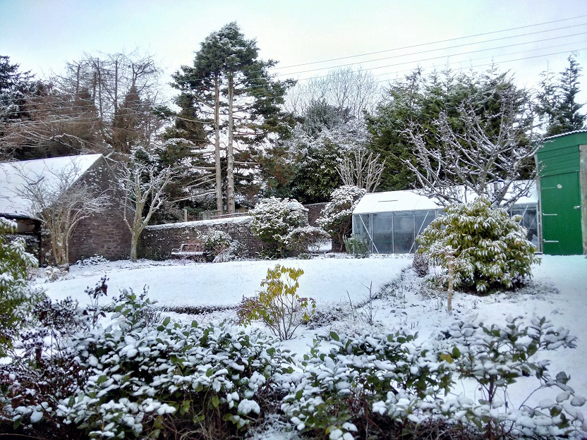 First_snowfall_of_2017_in_Perthshire_garden