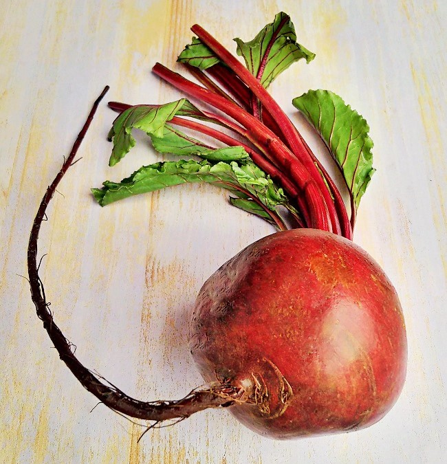 Single_globe_beetroot