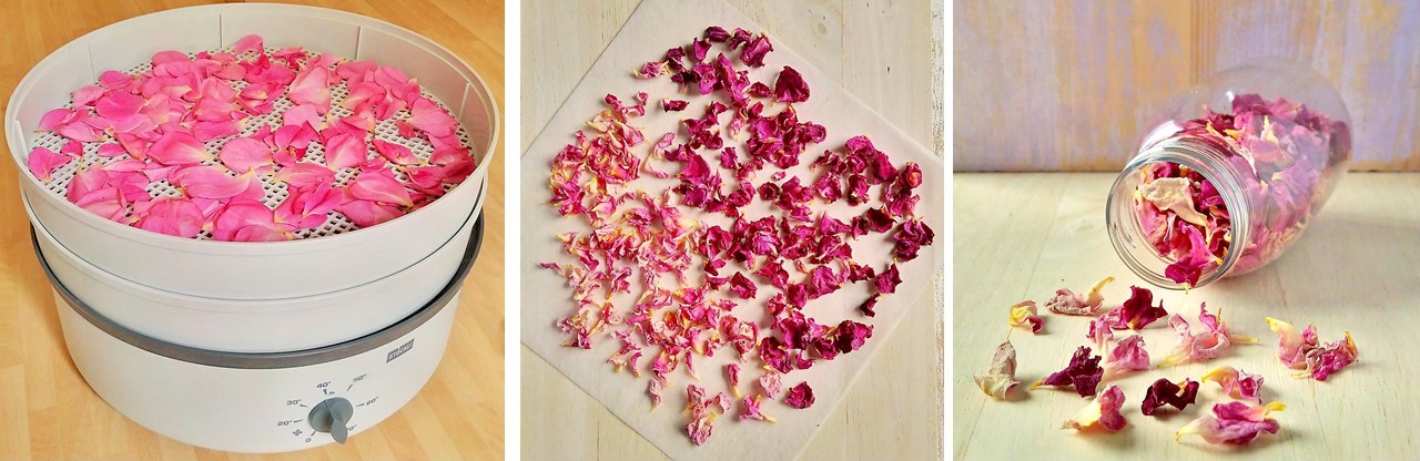 How_to_dry_fresh_rose_petals