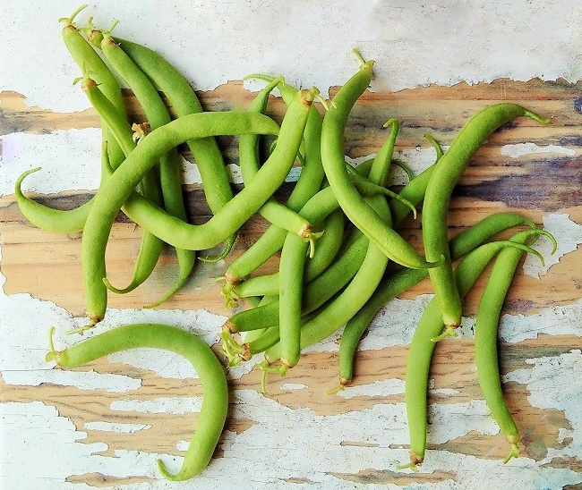 Freshly_picked_homegrown_French_beans_still-life