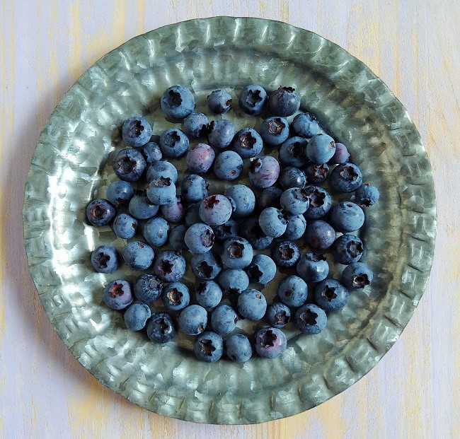 Small_plate_of_freshly_picked_blueberries