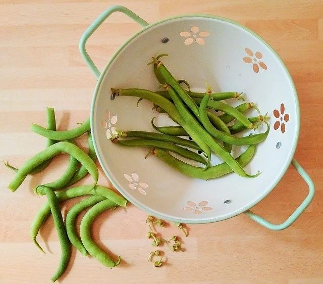French_bean_preparation