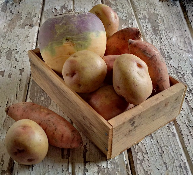 Turnip_sweet_potatoes_and_King Edward_potatoes_in_a_small_wooden_crate