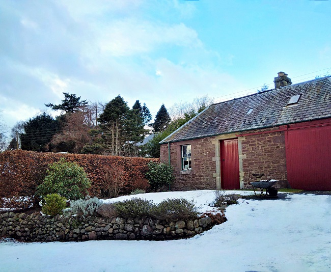 Blue_sky_after_snowfall_in_February_in_Scottish_garden