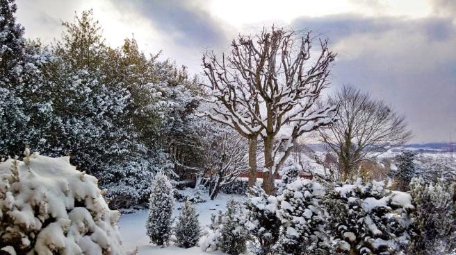 March_snow_in_central_Scotland
