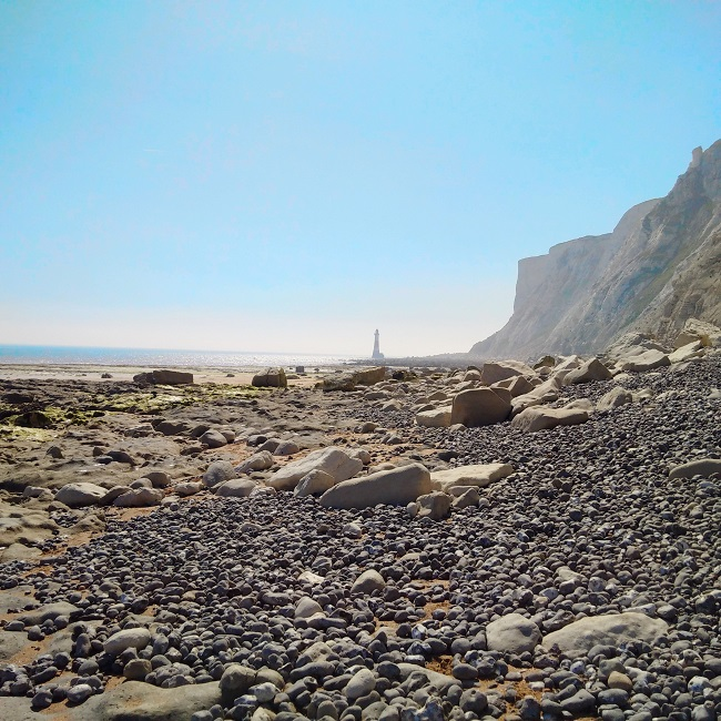 Sand_and_shingle_beach_at_low_tide_in_East_Sussxe