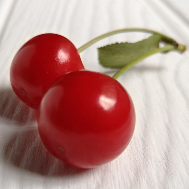 Pair_of_ripe_Morello_cherries_on_stalks_with_leaf