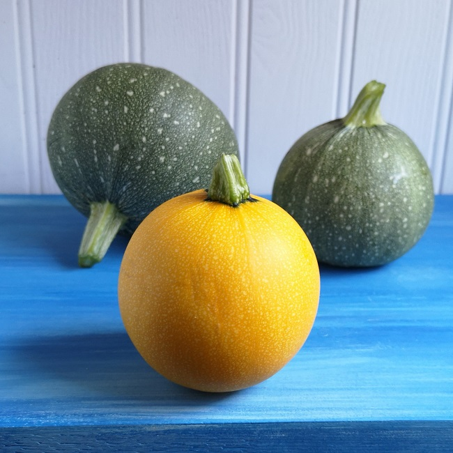 Green_and_yellow_ball-shaped_courgettes