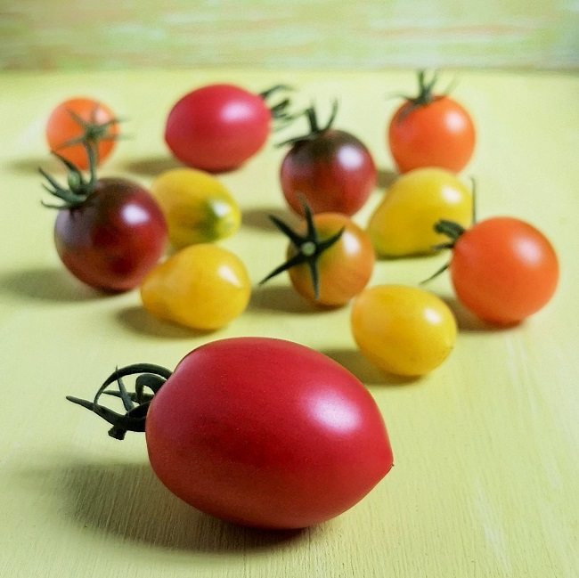 Orange_yellow_red_and_pink_varieties_of_tomato