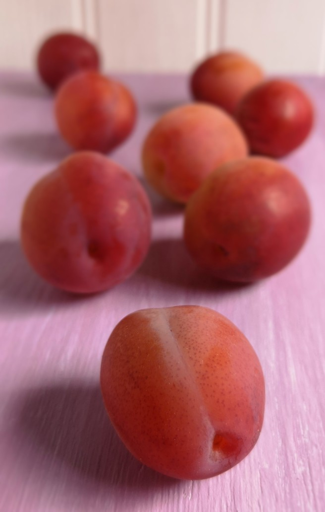 Close-up_of_fresh_Victoria_plums