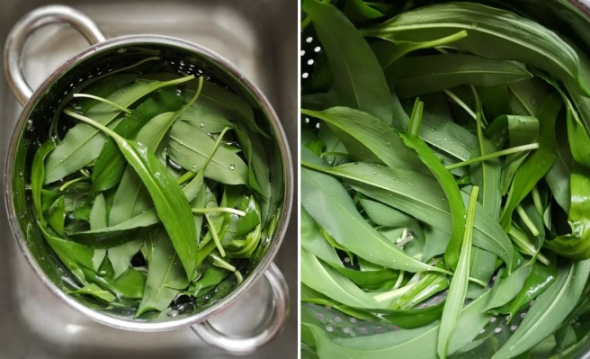 Dunking_wild_garlic_leaves_in_cold_water_and_shaking_dry