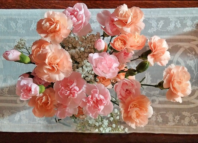 Pastel_pink_and_peach_carnations_arranged_with_gypsophila
