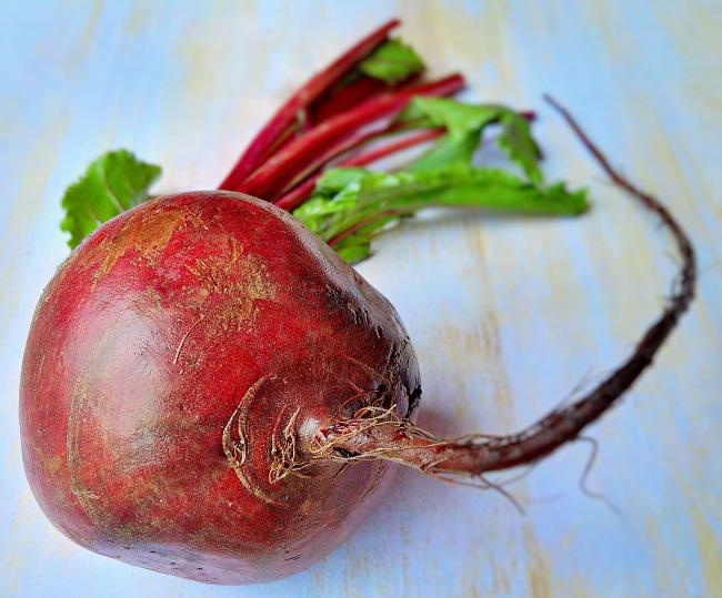 Still-life_of_a_fresh_beetroot_with_stalks