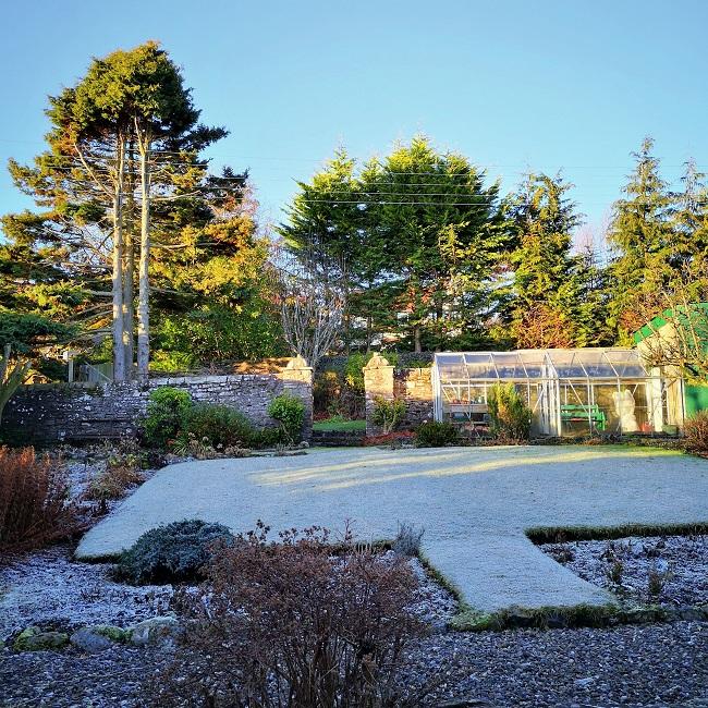 Afternoon_Winter_sunshine_on_New_Year's_Eve_garden