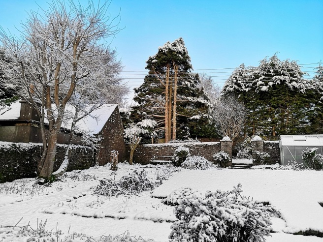 Snow-scene_Perthshire_back_garden_in_late_January_2020