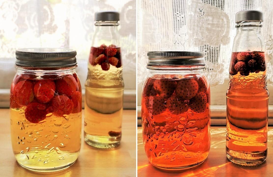Maturing_strawberry_vinegar_on_a_windowsill