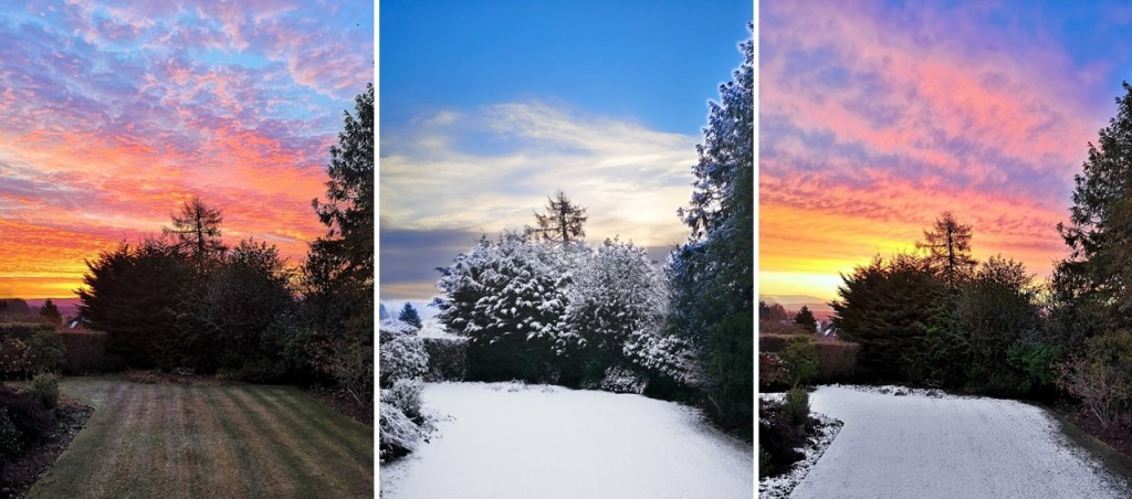Late_December_sunrises_over_a_Perthshire_garden