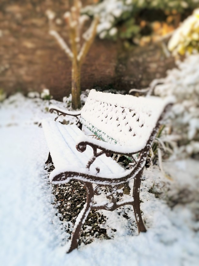 Garden_seat_covered_in_snow