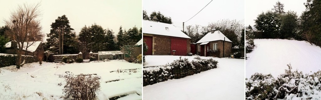 Scenes_of_a_snowy_Scottish_garden_in_January_2021