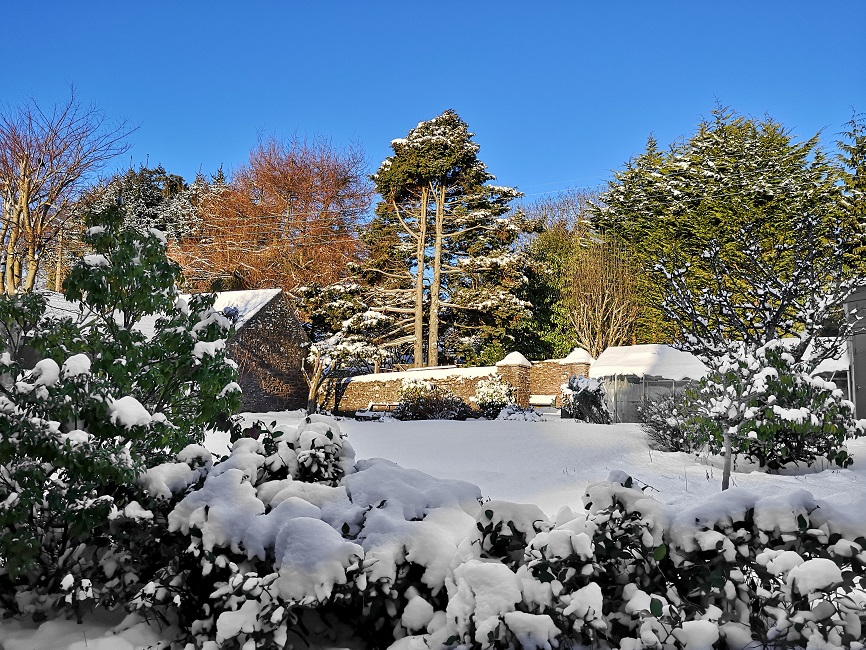 Snowy_Scottish_back_garden_in_mid-February