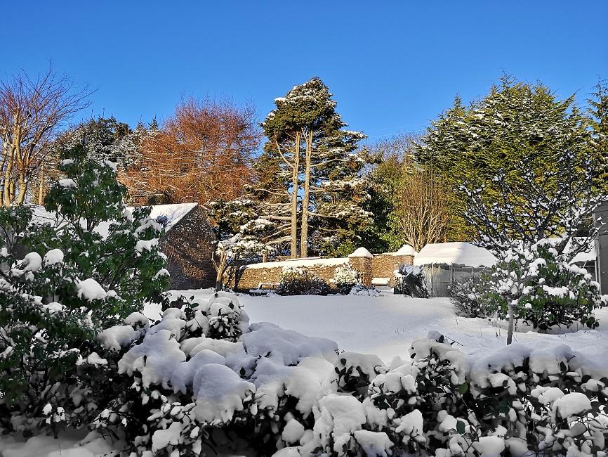 Snowy_Scottish_back_garden_in_mid-February