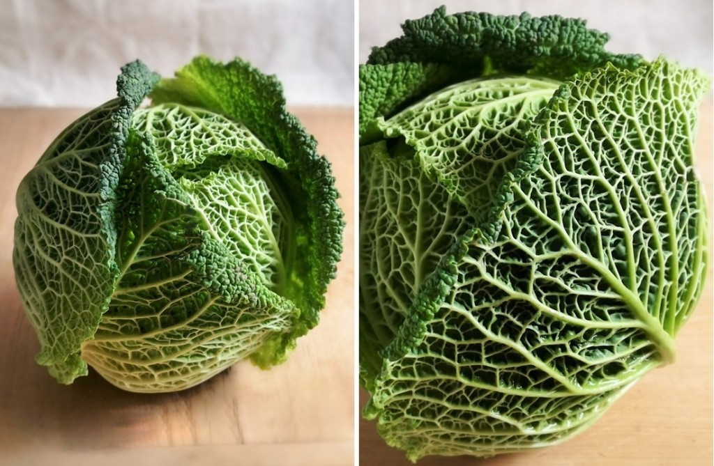 Whole_Savoy_cabbage