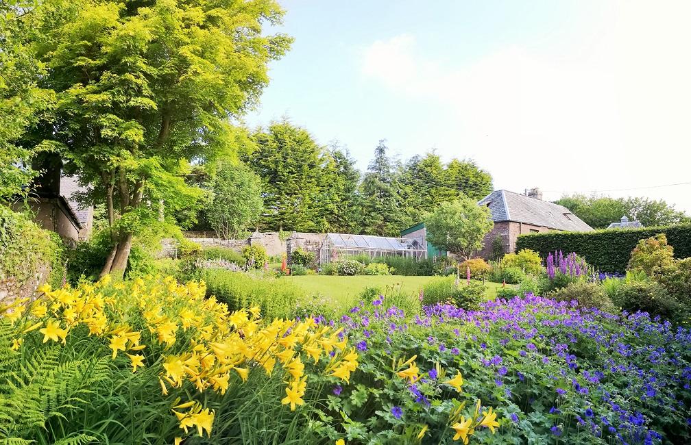 Midsummer_in_a_Scottish_garden